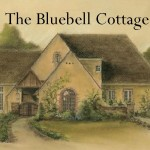 The Bluebell Cottage 2